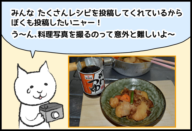 みんなたくさんレシピを投稿してくれているからぼくも投稿したいニャ-!う~ん、料理写真を撮るのって意外と難しいよ~